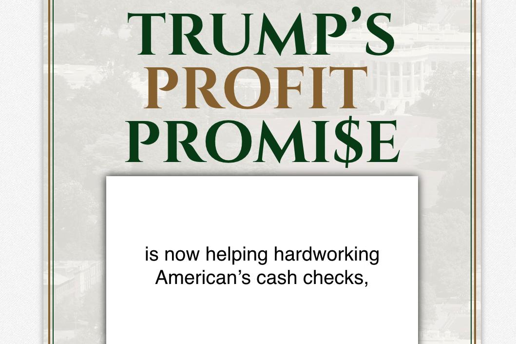 Trump Checks Review