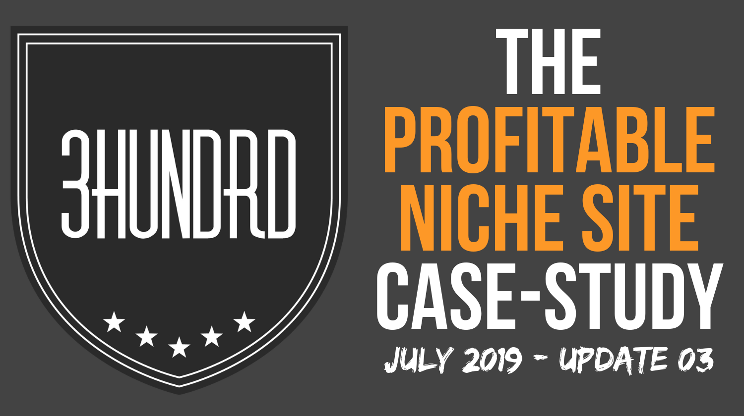 profitable niche site case study update 3