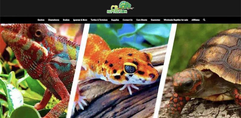 cb reptile affiliate program